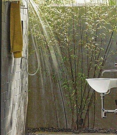 Prysznic podgołym niebem